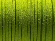 Wildlederimitat 3 x 1,5 mm grün