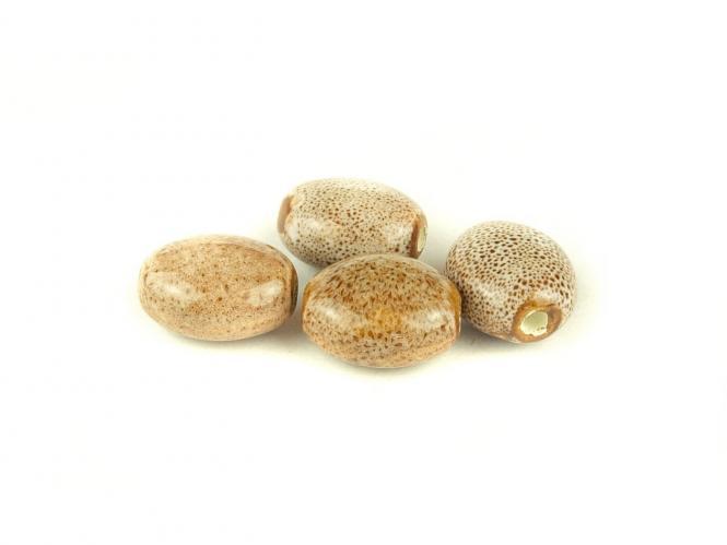 10 Stk Porzellan Perlen , Ø 16 x 14 x 9 mm, weiß-braun